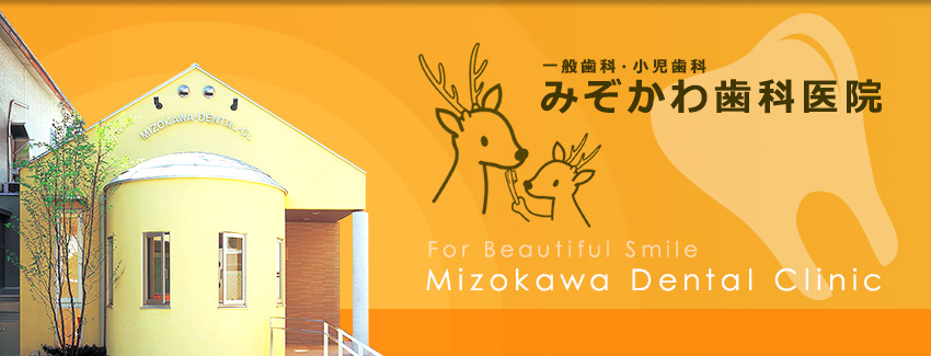 For Beautiful Smile Mizokawa Dental Clinic